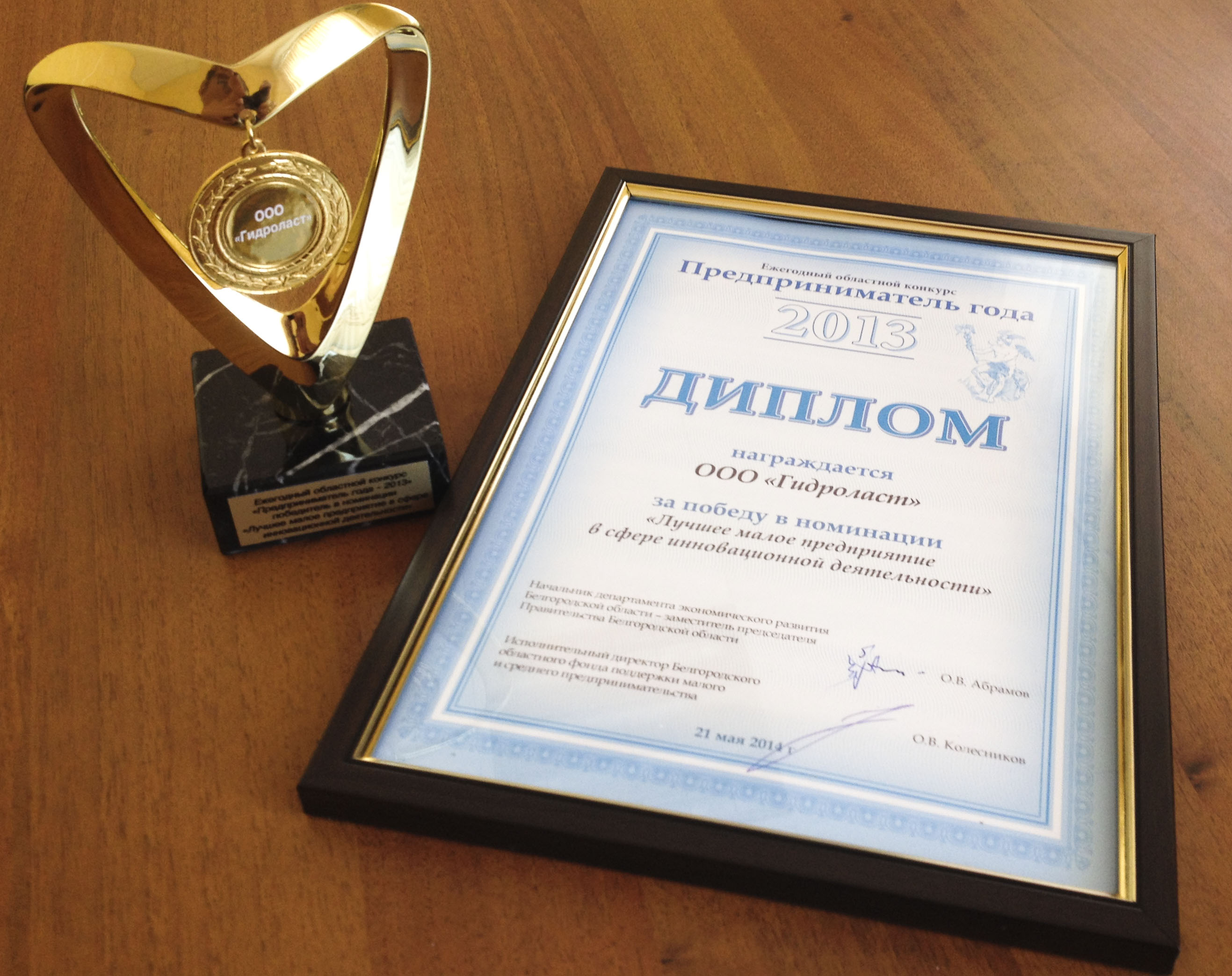 Диплом за победу в конкурсе «Предпринимательство-2014»